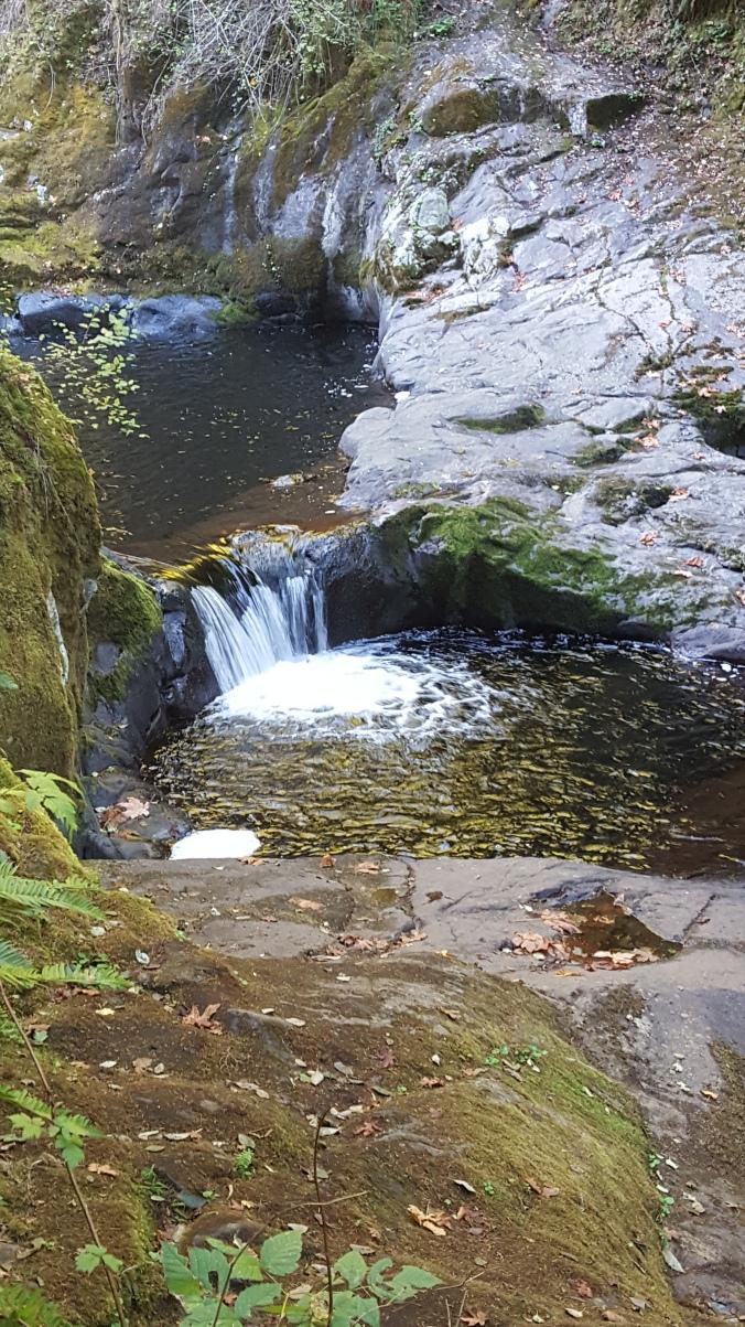 down-the-creek